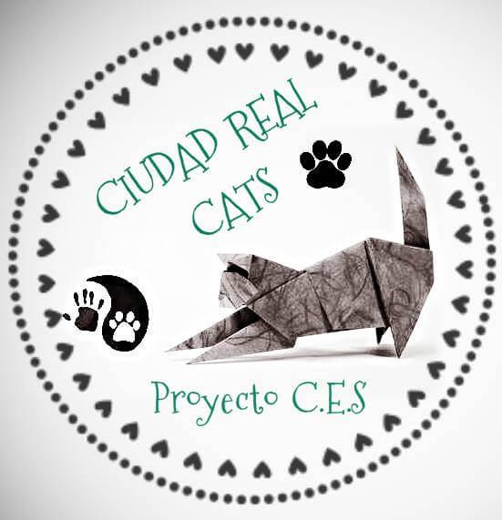 Ciudad Real Cats