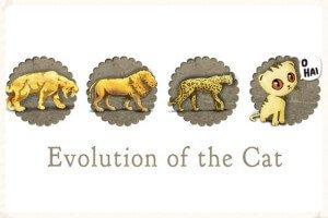 Evolución de los gatos a lo largo de la historia
