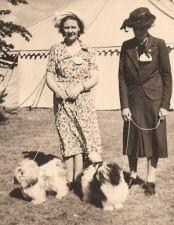 Lady Brownringg junto a Shussa y Hibou