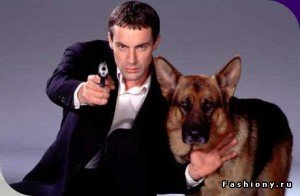 Rex, un perro policia