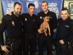 Agentes de la Policía pagan una operación a un perro maltratado para evitar que se quede cojo