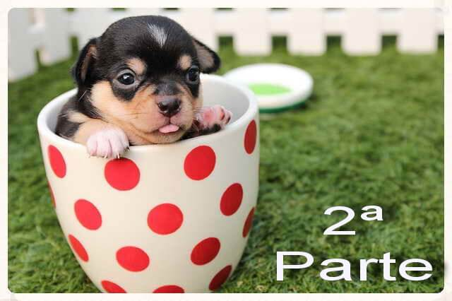 30 alimentos prohibidos para tu perro (parte 1)