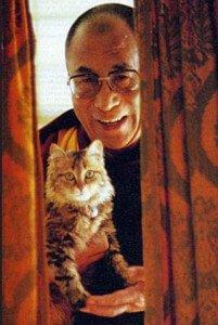 El Dalai Lama y su gato