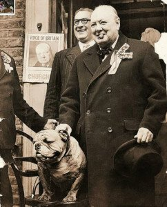 Winston Churchill y su BullDog