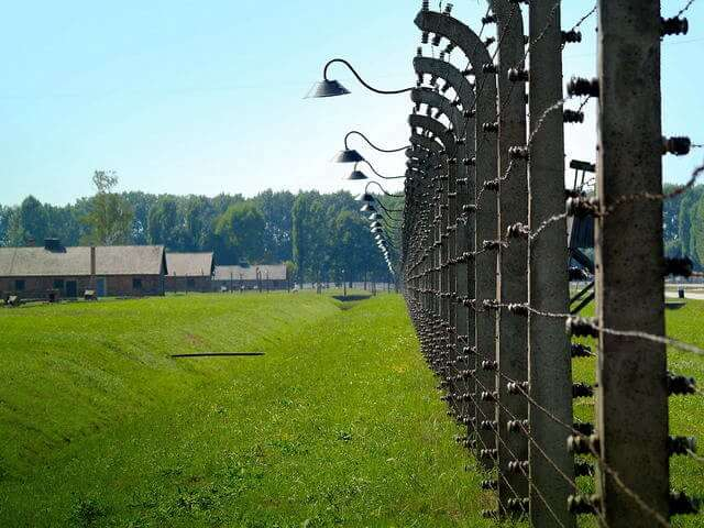 Stop a los campos de exterminio animal?