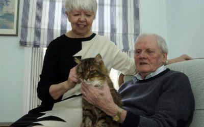 Un gato, supuestamente fallecido, regresa a su casa