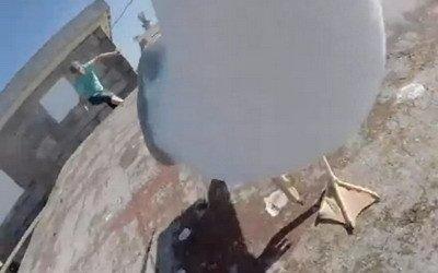 Gaviota roba cámara y se graba en vuelo