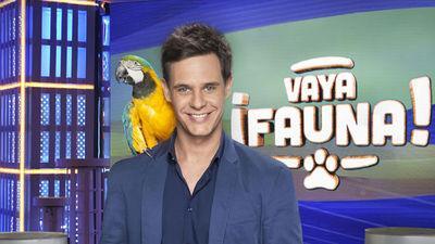 Vaya Fauna programa TV