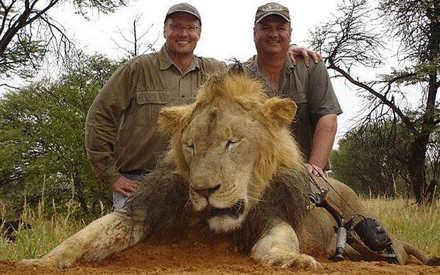 Walter Plamer y el león Cecil