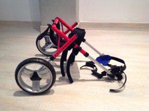 Silla de ruedas para perros de Novecan