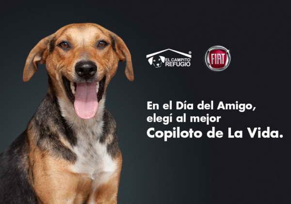 FIAT colabora con la adopción de peludos en su nueva campaña.Vídeo