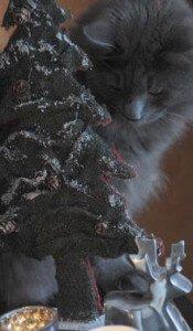 BARNEY Concurso Navidad